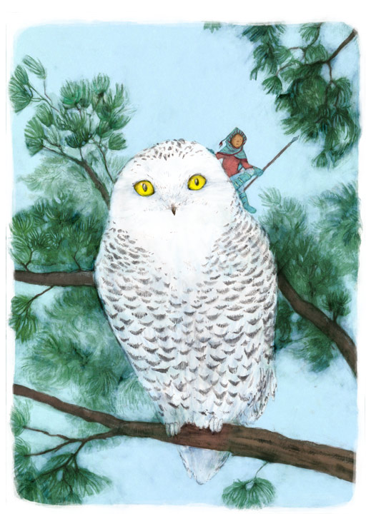 colour illustration in pencil and digital of snowy owl on a pine branch with a pixie rider