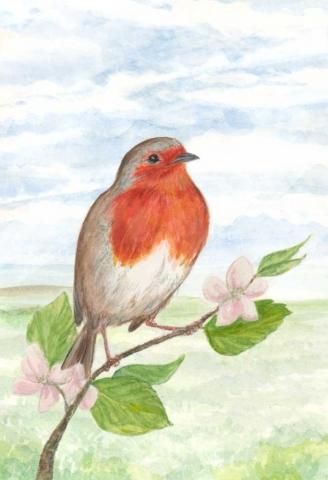illustration watercolour robin prop matt lucas pompidou
